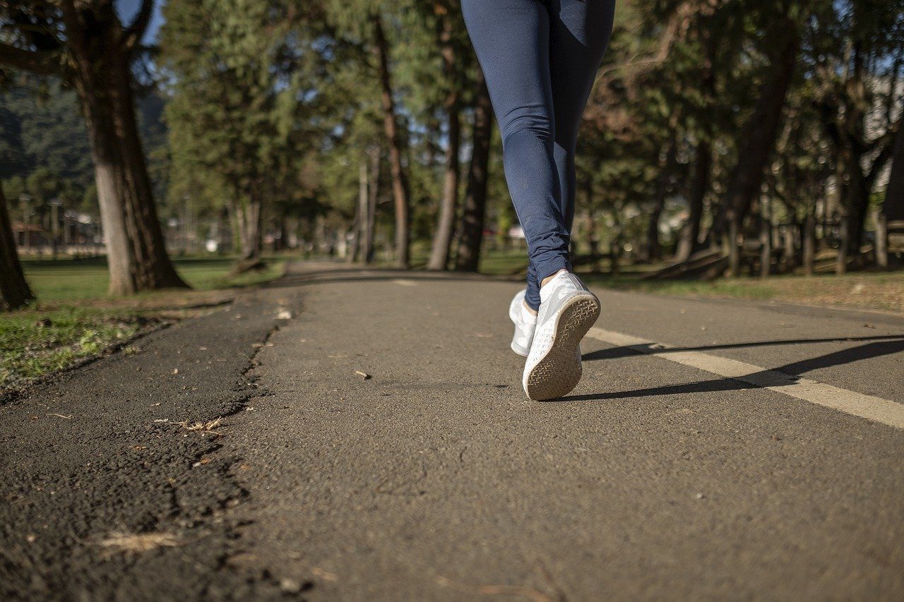 【書評】習慣の力 〜 朝散歩を習慣にする鉄則 〜