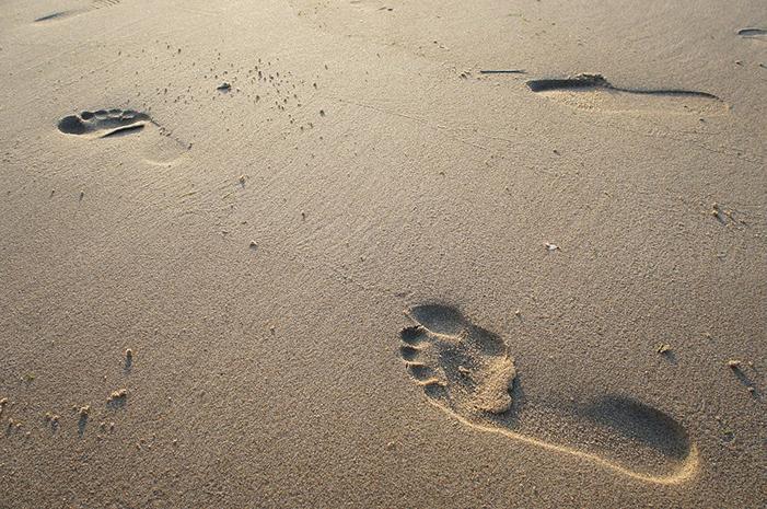 【書評】ウォーキング・セラピーとは? 〜ストレス・不安・うつは「歩くこと」と「◯◯こと」が効果的!〜